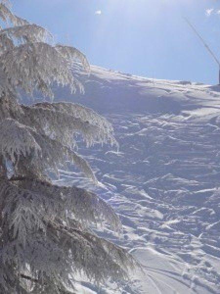20 Enero, nieve espectacular!!